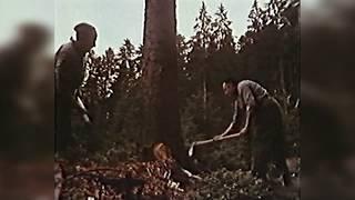 Von Rieshirten, Flößern und Kienrußbrennern - 1977