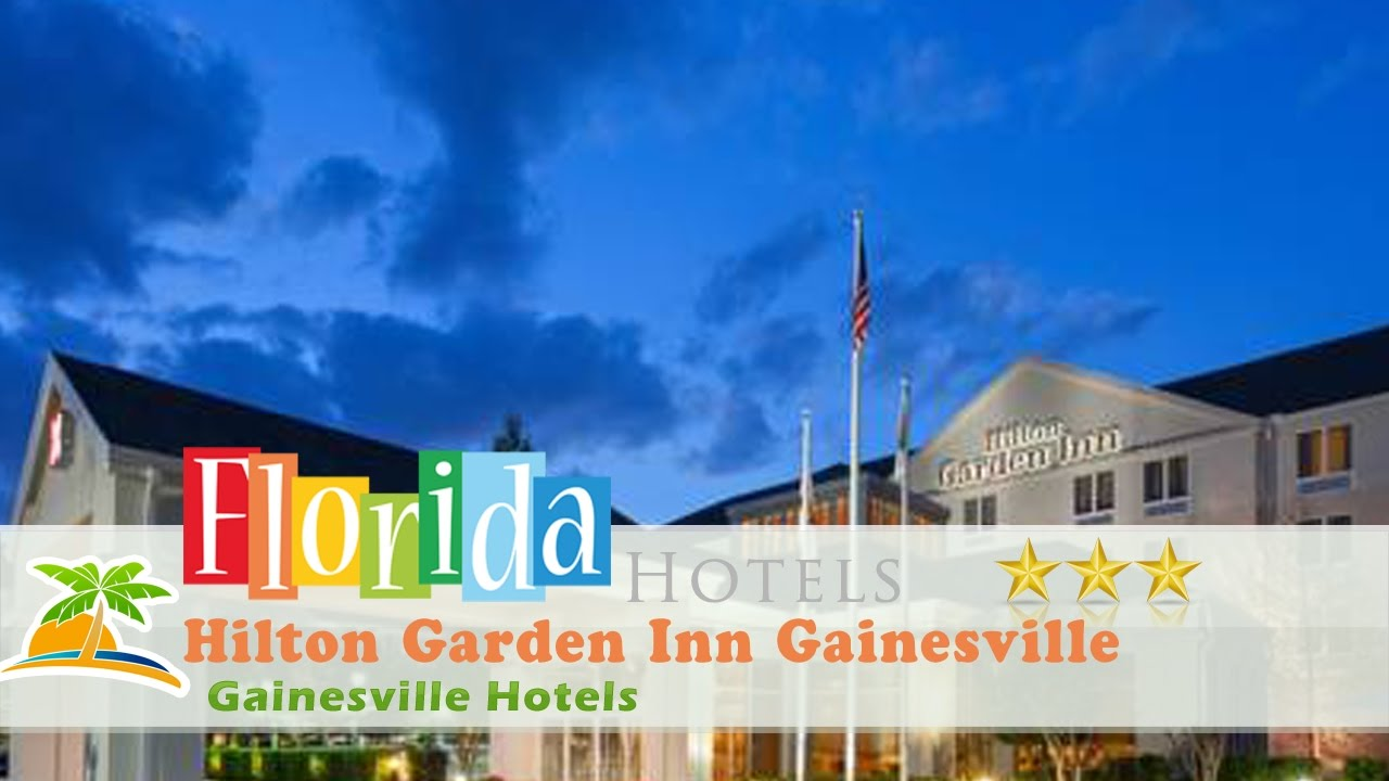 Hilton Garden Inn Gainesville   Gainesville Hotels, Florida