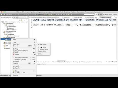Writing a domain integration test against database | Level