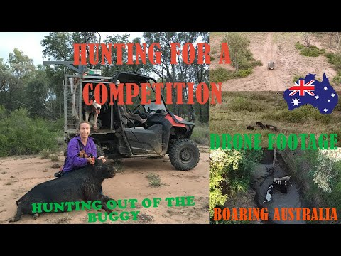Weekend Pig Hunting Trip, Hunting Wild Boar For Competition