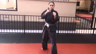 4 Counts Roundhouse Kick by 3rd degree Black Belt Sensei Dru Morin