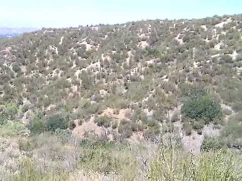 34 North 117 West: In the Chaparral Biome, California - YouTube