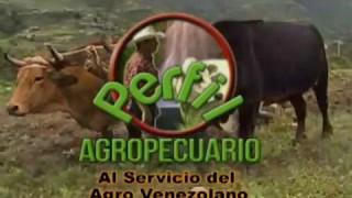 Perfil Agropecuario - Domingo 07-05-2017 XLII Feria del Ganado Cebú Valencia Edo Carabobo Parte (I)