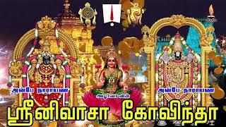 ஸ்ரீ சீனிவாச கோவிந்தா   Sri Srinivasa Govinda Sri Venkatesa Govinda  Perumal Songs  Tamil Devotional