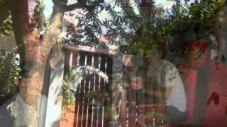 Vanessa da Mata -- Boa Sorte/Good Luck