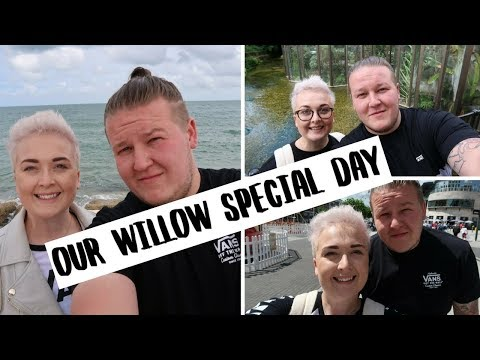 Willow Special Day