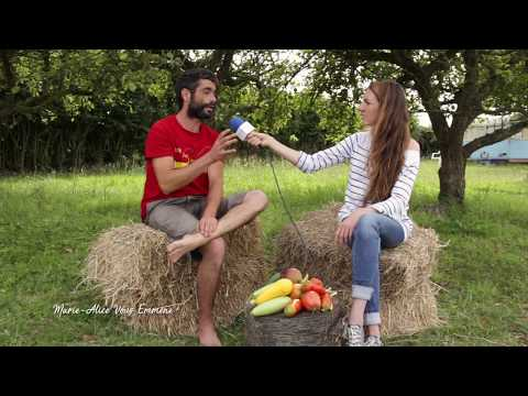 S2017v06 permaculture des erreurs viter au poulai for Permaculture bretagne