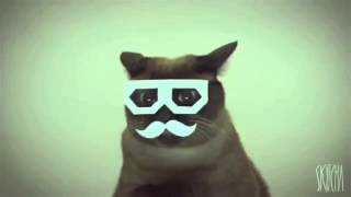 dubstep cat extended