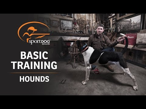 Basic Training :: Hounds