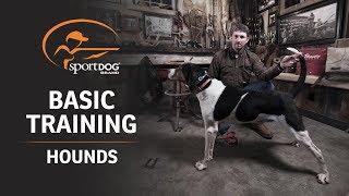Basic Training :: Hounds