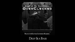 Danny Baranowsky - Deep Sea Bass (PrototypeRaptor Extended ReMix)