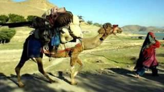 Pashto new gharany sandara