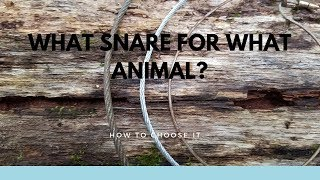What Type of Snare for What Animal?