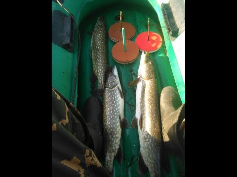 рыбалка на кружок рыболовный