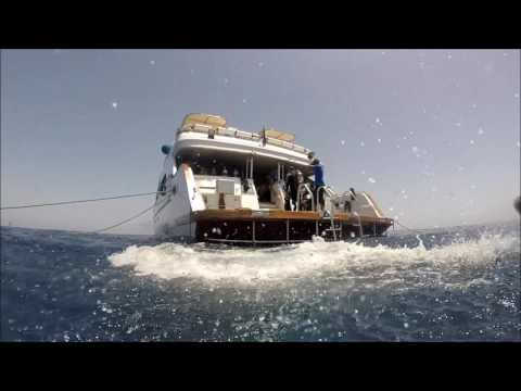 Red Sea Liveaboard - May 2016 - Famous Five Tour