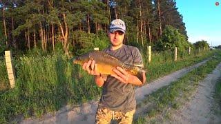 Рыбалка на карпа на кукурузу день 2