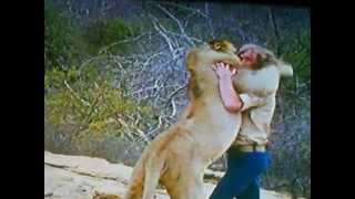 Gambar cover Christian the Lion Reunion Video