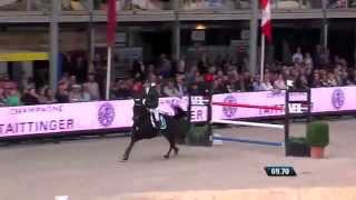 Talks Cheap, 7y old mare by Inspector X Colin Diamond, World Championship Final 7y/o Horses Lanaken
