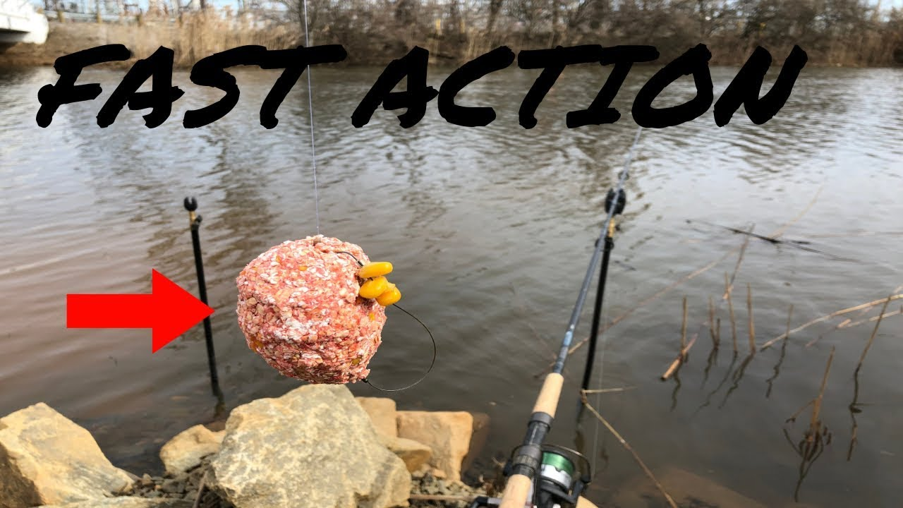 Using Big Chunks Of Pack Bait For Big Carp An Effective Strategy Youtube