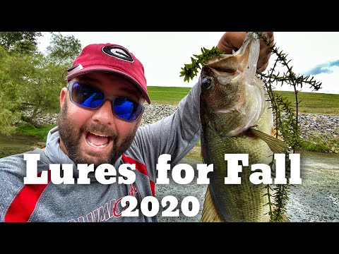 Lures That You Need For Bass Fishing In The Fall