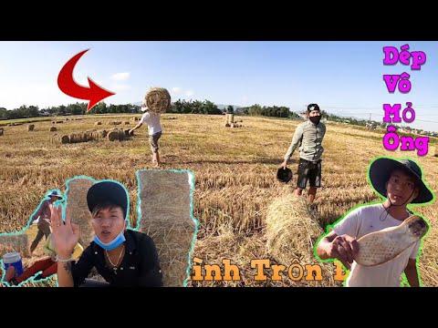 NVL | Troll Cả Team Gánh Rơm Cho Người Lạ Trưa Nắng
