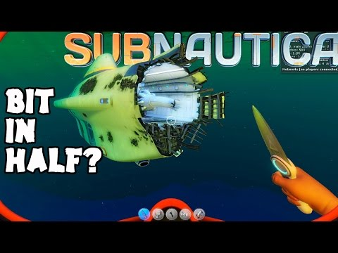 Subnautica - NEW CYCLOPS SHIELDING & SUBS CAN BE RIPPED IN HALF? DISABLING THE ARRAY? ( Gameplay )