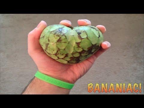 How To Eat A Cherimoya Fruit (Custard Apple)