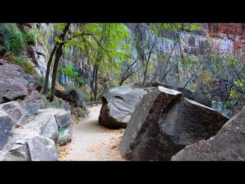 Riverside Walk Trail (Gateway to The Narrows) - Zion National Park in 4K!