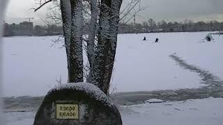 Зимняя рыбалка в снегопад