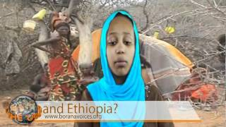 What is next for the Borana in Kenya and Ethiopia?