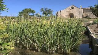 Offre culturelle des Alpes de Haute-Provence en 3 minutes