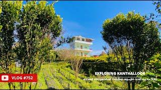 കാന്തല്ലൂരിൽ ഓറഞ്ച് തോട്ടങ്ങൾക്ക് നടുവിൽ താമസിക്കാം - Apple Valley Home Stay in Kanthalloor