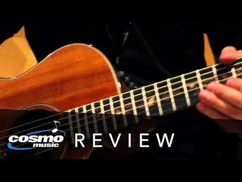 Taylor Acoustic Guitars Review (PS14CE K24CE PS14CE)