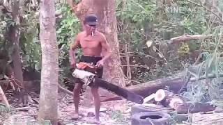 Tukang Potong Kayu Pakai Gergaji Mesin
