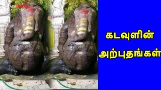 Miracles of God   கடவுளின் அற்புதங்கள்!!   Britain Tamil Bhakthi