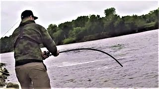 These fish are SO STRONG!! (river fishing)