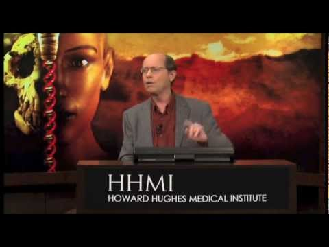 Human Evolution and the Nature of Science