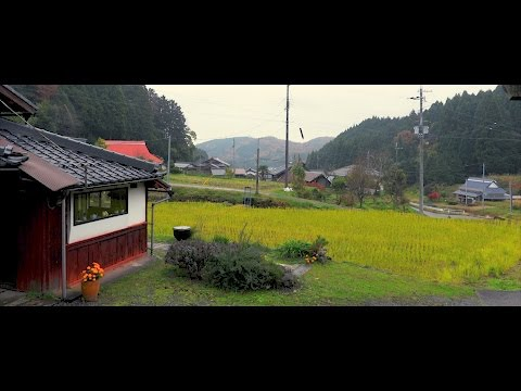 38 Years in Japan: Meet Swiss Artist Regina Maekawa-Altherr | Mini-Documentary