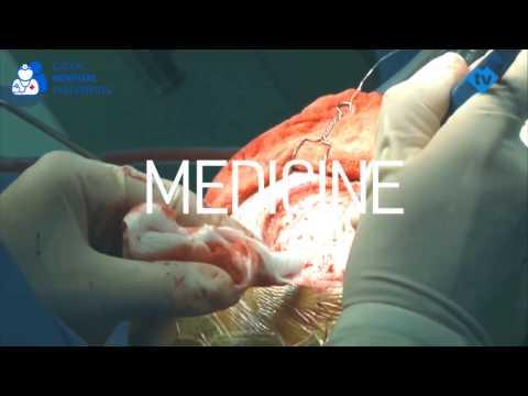Czech Hospital Placements - Extraordinary Study Program