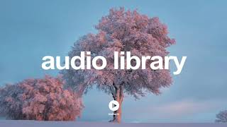 Intended Force by Kevin MacLeod | No Copyright Music YouTube - Free Audio Library