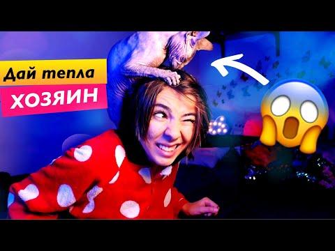 Ai Mori - когда котики мёрзнут ❄️(авторская  песенка)