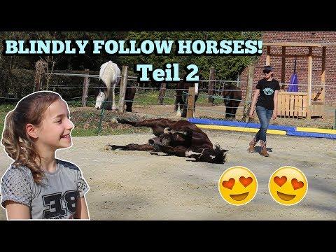 WIR BESUCHEN JENNY VON BLINDLY FOLLOW HORSES! | Smarty und Bill ♥ | Marina und die Ponys