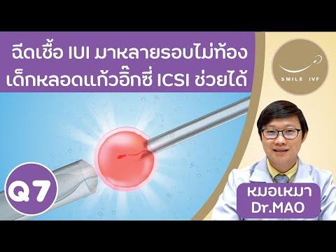 ฉีดเชื้ออสุจิ IUI หลายรอบแต่ไม่ท้อง ......เด็กหลอดแก้วอิ๊กซี่ ICSI ช่วยได้