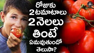 Health Benefits Of Eating Tomatoes In Telugu  | Nutritional Facts Of Tomatoes | Telugu Panda