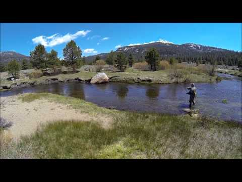 Fly Fishing West Fork Carson River In Hope Valley With Sean 5-9-15
