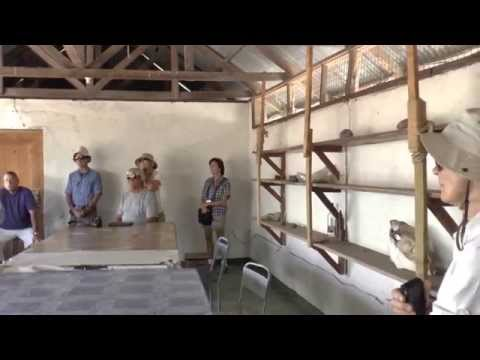 Tanzania   Oldupai Gorge   Discovery of Early Man #8   18 Sept '14
