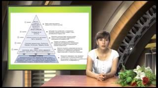 видео Внедрение Системы Менеджмента Качества (СМК)