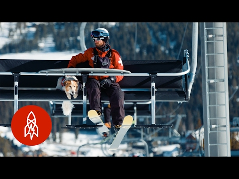 Colorado's Mountain Rescue Dog Squad