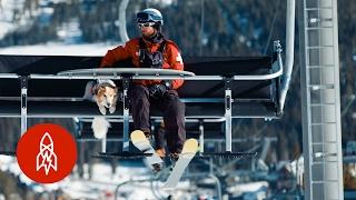 Colorado's Mountain Rescue Dog Squad