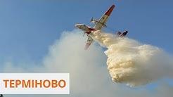 Загорелся Полесский природный заповедник. ГСЧС тушит огонь с трех самолетов